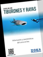 Información completa del curso de Tiburones y rayas