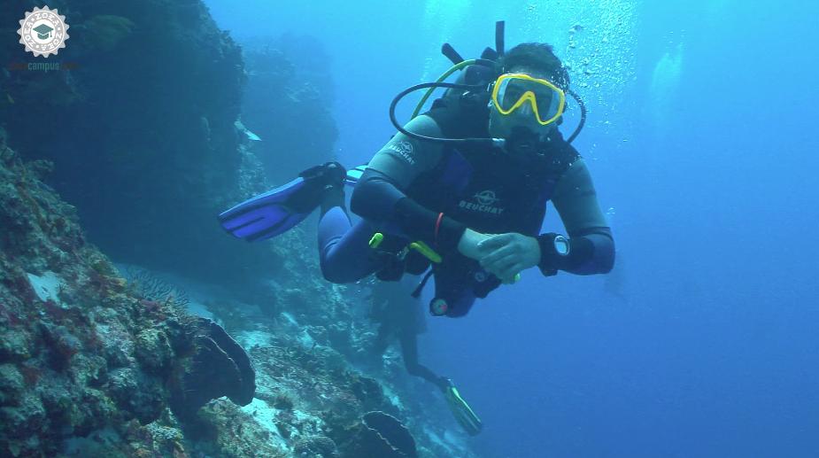 arrecife3